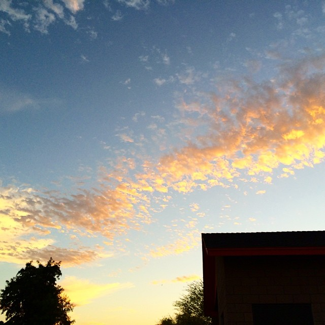 wide open skies Taz Loomans